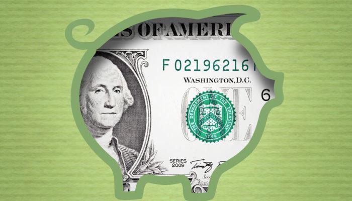 Cash Budget student loan debt